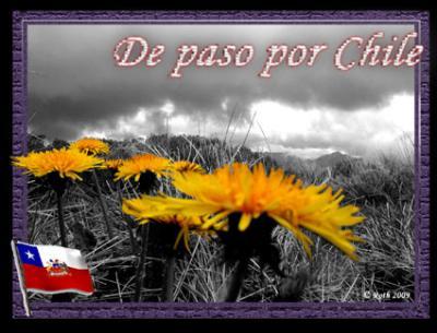 De paso por Chile (3er Bloque)